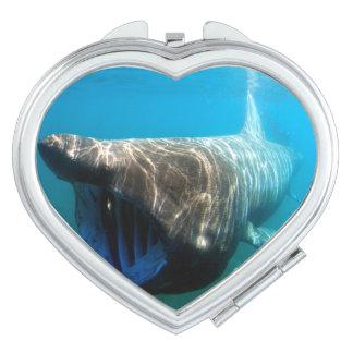 Basking shark (Cetorhinus maximus) Travel Mirror