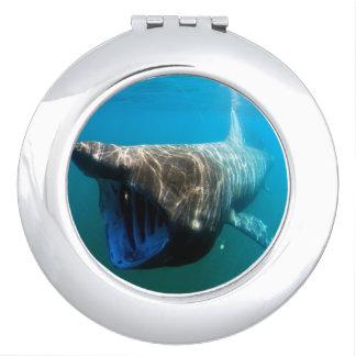 Basking shark (Cetorhinus maximus) Compact Mirror