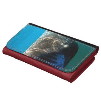 Basking shark (Cetorhinus maximus) Wallet