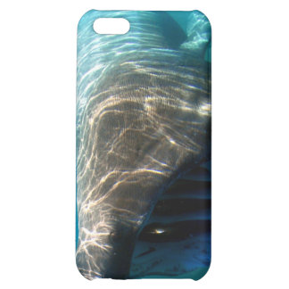 Basking shark iPhone 5C case