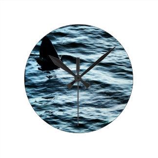 Basking shark round clock