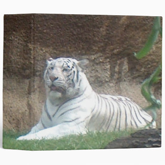 Basking White Tiger Binder