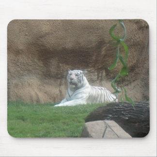 Basking White Tiger Mouse Pad