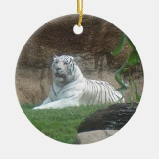 Basking White Tiger Ornament ~ Endangered Species