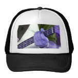 bass blue player hand on neck male photograph hat