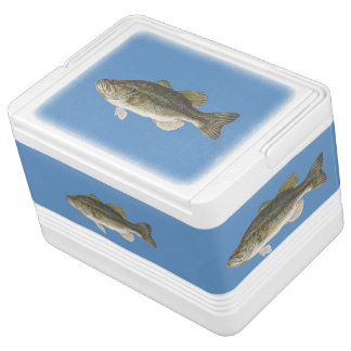 Bass Fish Igloo Can Cooler 12 or 24 cans