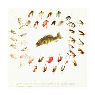Bass Fishing Flies 1882 Canvas Print
