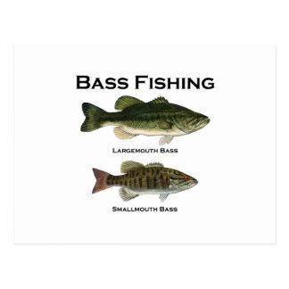 Bass Fishing Logo (largemouth - smallmouth) Postcard