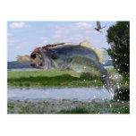 Bass gag pic postcards