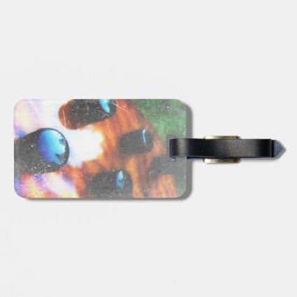 Bass guitar control knobs grunge look tiger eye travel bag tags