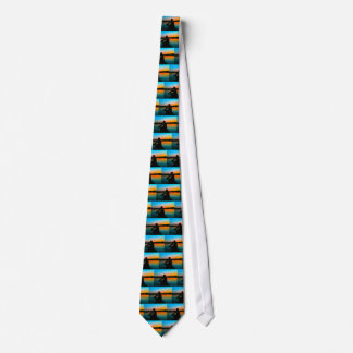 Bass Sunset Neck Tie
