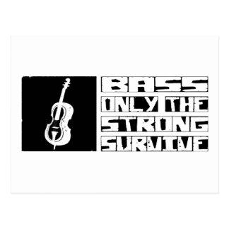 Bass Survive Postcard