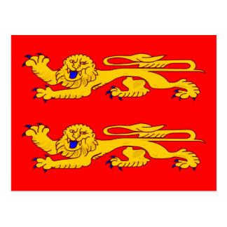 Basse Normandie, France flag Postcard