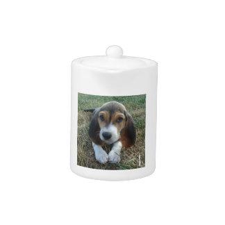 Basset Artésien Normand Puppy Dog Teapot
