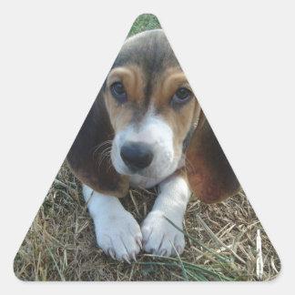 Basset Artésien Normand Puppy Dog Triangle Sticker