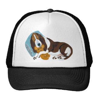 Basset Asleep With Teddy Trucker Hat