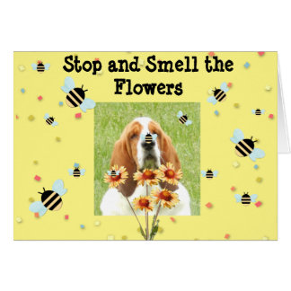 """Basset Birthday Card -""""Stop And Smell The Flowers"""""""