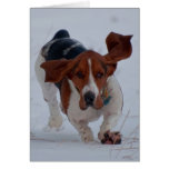 Basset Fast Stationery Note Card