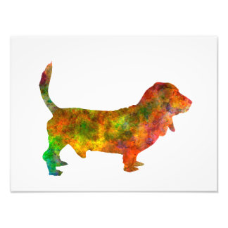 Basset Hound 01 in watercolor 2 Photo Print