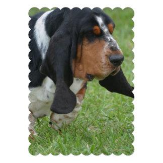 basset-hound-19.jpg custom announcement