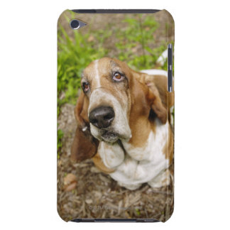 Basset Hound 2 Barely There iPod Covers