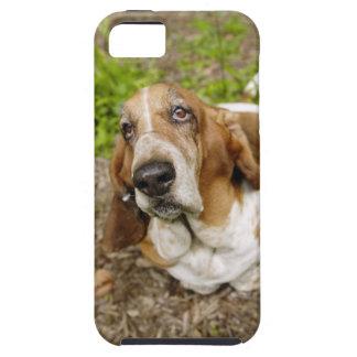 Basset Hound 2 iPhone SE/5/5s Case