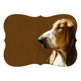 basset-hound-3 cards