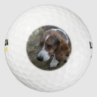Basset Hound adorable Pack De Pelotas De Golf