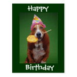 Basset Hound Birthday Lollipop Postcard