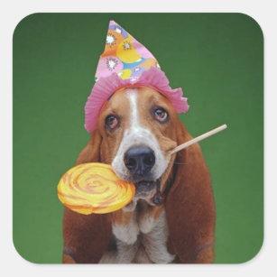 01fc6b95a18d7 Basset Hound Birthday Lollipop Square Sticker