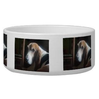 Basset Hound Bowl Dog Water Bowl