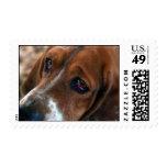 Basset Hound Design Postage Stamp