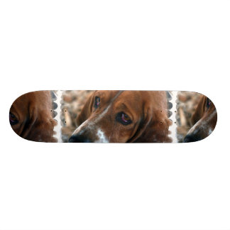 Basset Hound Design Skateboard