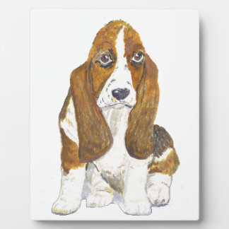 Basset Hound Display Plaques