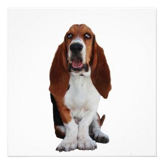 Basset Hound Dog Invitation