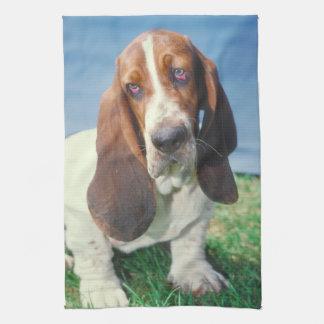 Basset Hound Dog Kitchen Towel
