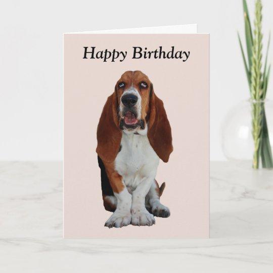 Basset Hound Dog Photo Happy Birthday Card Zazzle