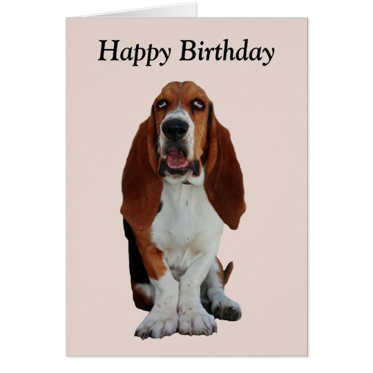 Basset hound dog photo happy birthday card zazzle basset hound dog photo happy birthday card bookmarktalkfo Gallery