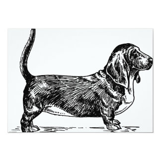 basset hound drawing.png card