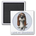 Basset Hound Granddog Magnet