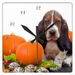 Basset Hound in pumpkins dog square clock