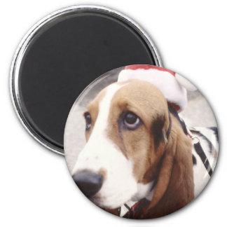 Basset Hound in Santa Hat 2 Inch Round Magnet
