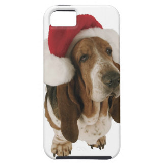 Basset hound in Santa hat iPhone 5 Cover