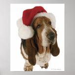 Basset hound in Santa hat Posters