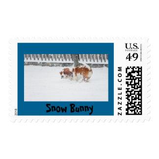 Basset Hound in snow U.S. postage stamp