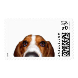 Basset Hound In your face Postage