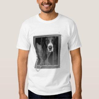 basset hound jail t shirt