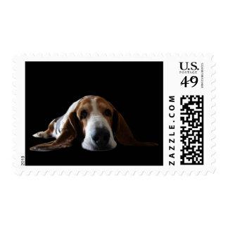 Basset Hound lying down Postage