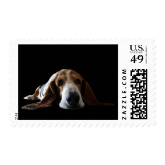 Basset Hound lying down Postage Stamps
