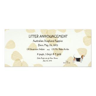 Basset Hound on Tan Leaves Card